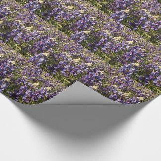 Purple Lupine Wildflower Flowers Floral