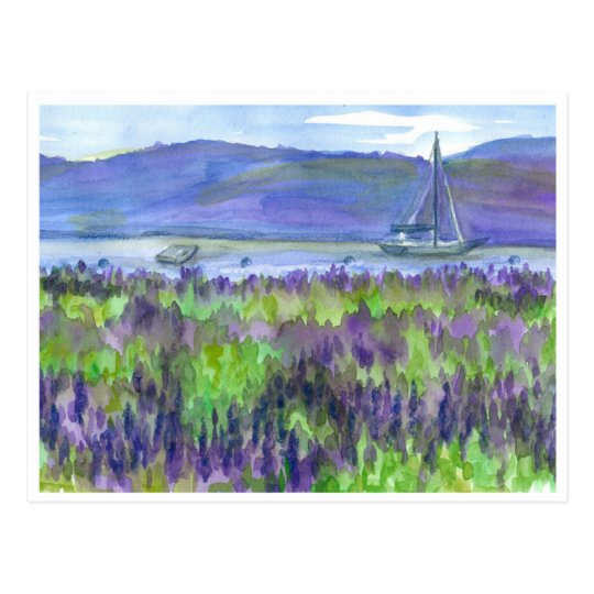 Purple Lupines Sailboat Watercolor Postcard