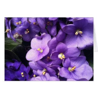 Purple Me Card