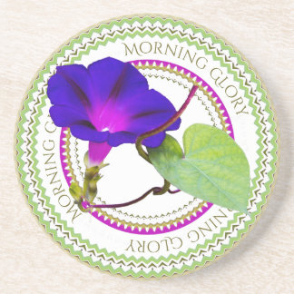 Purple Morning Glory Floral Photography Cut Out Beverage Coaster