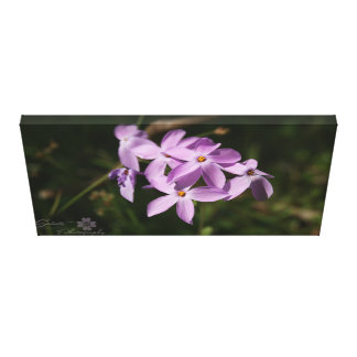 Purple Mountain Flowers Canvas Print