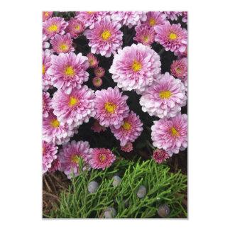 Purple Mum and Cedar Berries Card