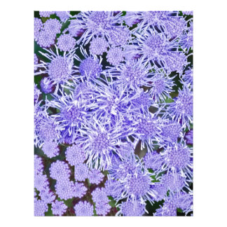 Purple Mums Personalized Letterhead