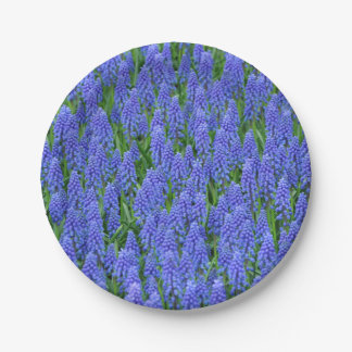 Purple muscari spring flowers paper plate