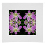 Purple Orchid Abstract Poster