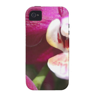 Purple Orchid iPhone 4/4S Case