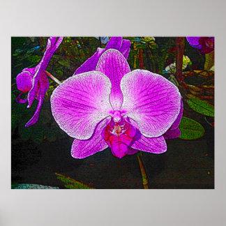 Purple Orchid Fantasy Print