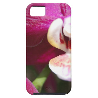 Purple Orchid iPhone 5 Cases