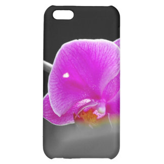 purple orchid iPhone 5C covers