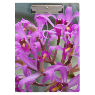 Purple Orchids Floral Clipboard