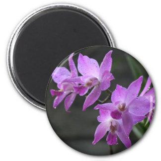 Purple Orchids Magnet
