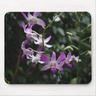Purple Orchids Mouse Pad
