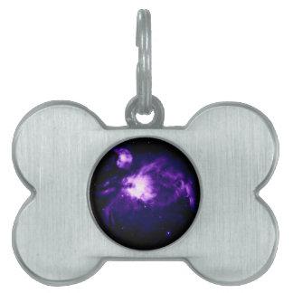 Purple Orion Nebula : Galaxy Pet Tag