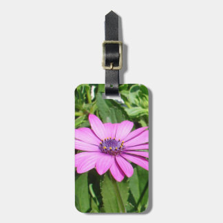 Purple Osteospermum Against Green Leaves Bag Tag