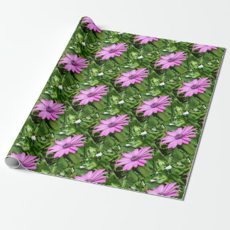 Purple Osteospermum Against Green Leaves Wrapping Paper