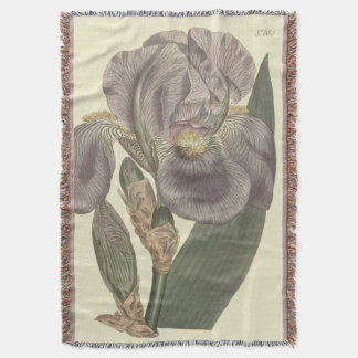 Purple Pale Flag Iris Illustration Throw