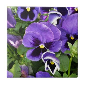 purple pansies ceramic tile