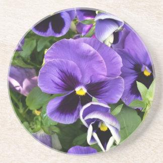 purple pansies coaster