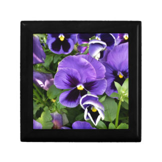 purple pansies gift box