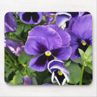 purple pansies mouse pad