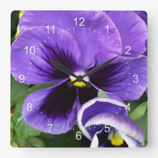 purple pansies square wall clock