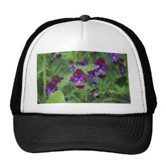 Purple Pansies Trucker Hat