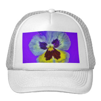 Purple Pansy Amethyst Colored Gifts  by Sharles Trucker Hat
