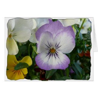 purple pansy card