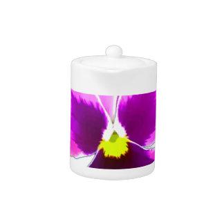 Purple Pansy Flower 201711