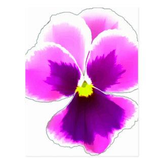 Purple Pansy Flower 201711 Postcard