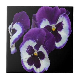Purple_Pansy_Posy,_ Tiles