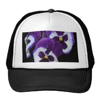 Purple_Pansy_Posy,_ Trucker Hat