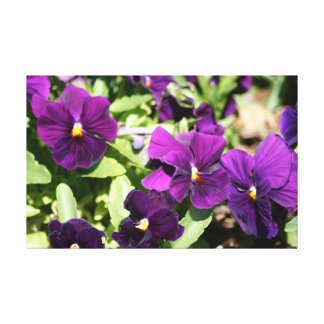 Purple Pansy Wrapped Art Canvas