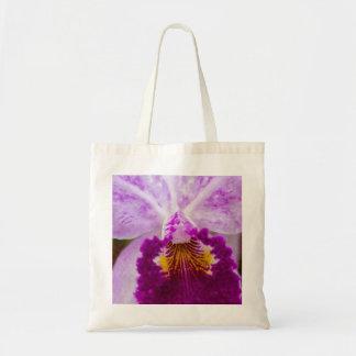 Purple Passion Orchid