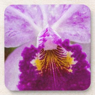 Purple Passion Orchid Coaster