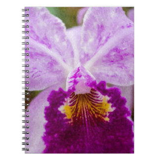 Purple Passion Orchid Notebook