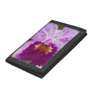 Purple Passion Orchid Tri-fold Wallet