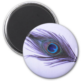 Purple Peacock Feather Refrigerator Magnet