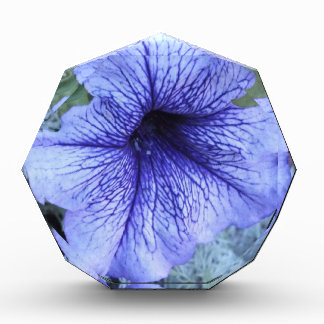 Purple Petunia Acrylic Photo Block