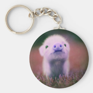 Purple Pigsy Key Chain