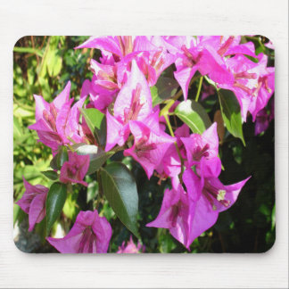 Purple Pink Bougainvillia In Blossom Mouse Pad