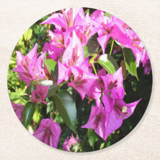 Purple Pink Bougainvillia In Blossom Round Paper Coaster