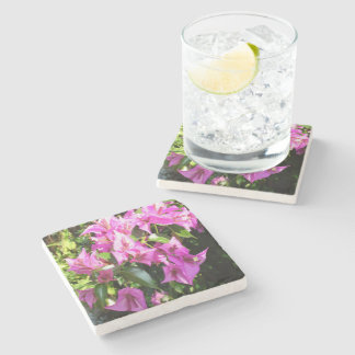 Purple Pink Bougainvillia In Blossom Stone Coaster