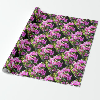Purple Pink Bougainvillia In Blossom Wrapping Paper