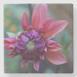 Purple Pink Dahlia Stone Coaster
