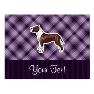 Purple Pitbull Postcard