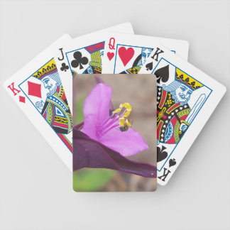 purple plant called spiderwort and a tiny bee bicycle playing cards