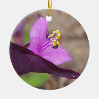 purple plant called spiderwort and a tiny bee ceramic ornament