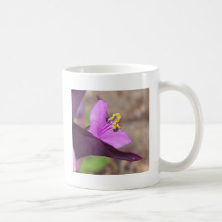 purple plant called spiderwort and a tiny bee coffee mug