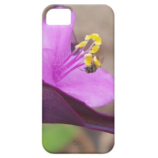 purple plant called spiderwort and a tiny bee iPhone 5 case